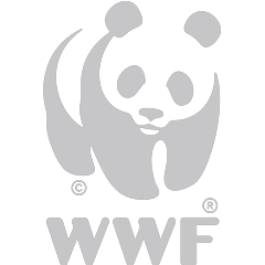 https://www.tsowasafariisland.co.za/wp-content/uploads/sites/15/2018/02/WWF-1.png